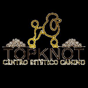 logotipo final topknot